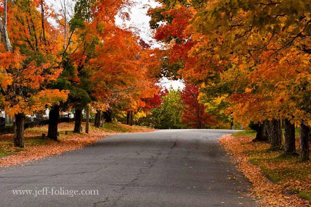 New-Salem-fall-foliage-awaken