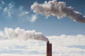 Awaken - Coal