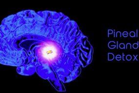 pineal-gland-detox-awaken