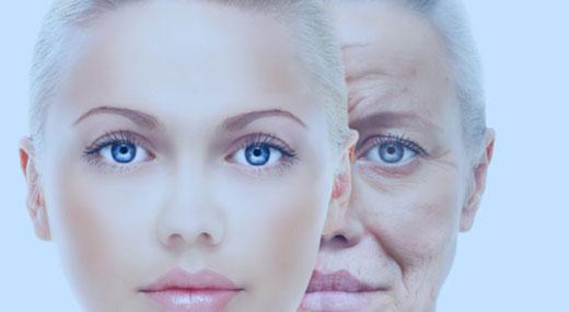 reversing-aging-on-a-cellular-level-awaken