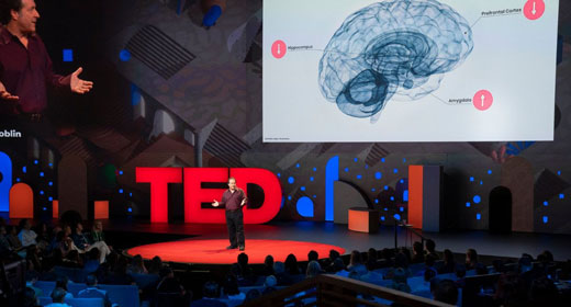 The-First-Official-TED-Talk-About-Psychedelics-awaken
