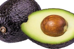 Avocado-awaken