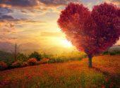 God-Loves-awaken