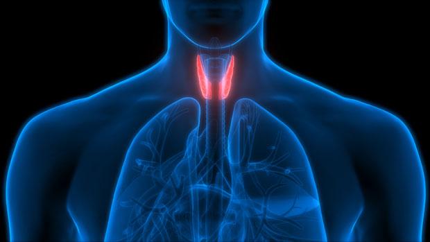 Thyroid-Health-awaken