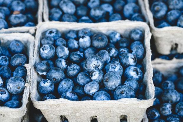 blue-berries-awaken