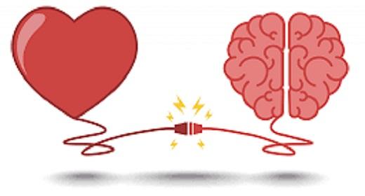 How Do Brain Health And Heart Health Go Hand In Hand?
