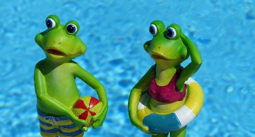 frogs-awaken
