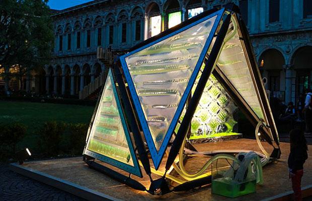 8_urban-algae-canopy-awaken
