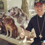 Brazilian-priest-welcomes-stray-dogs-inside-church-to-be-adopted-awaken