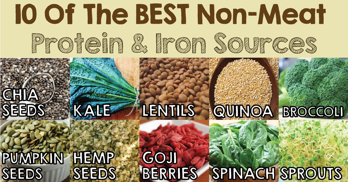 NON-MEAT PROTEIN AND IRON SOURCES