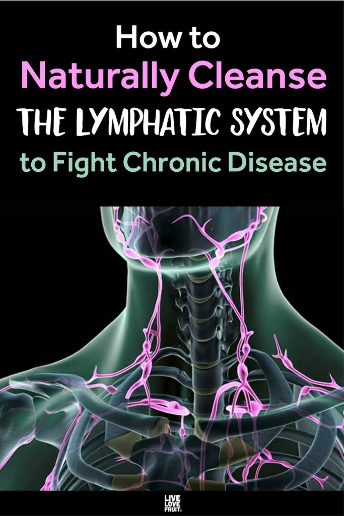 3D representation of lymphatic system in neck and shoulders with text - how to naturally cleanse the lymphatic system to fight chronic disease