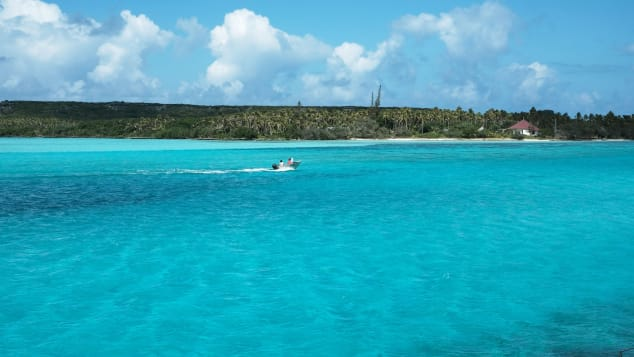 New Caledonia's waters are a haven for marine life.
