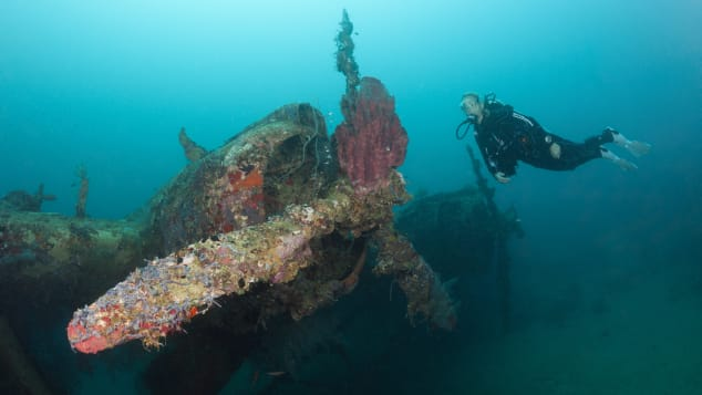 Sunken seaplanes, oil tankers and submarines make the Solomon Islands a subaquatic museum.