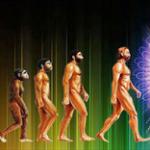 conscious_universe-awaken
