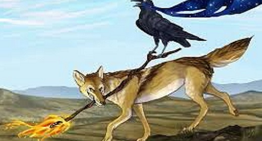 Native Americans Coyote
