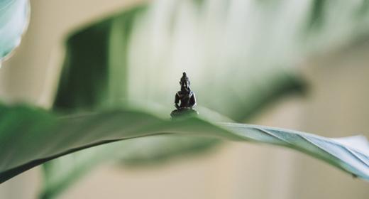 benefits-of-meditation-awaken