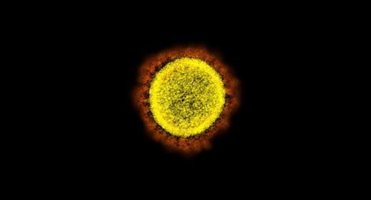 yellow-red-black-coronavirus-awaken