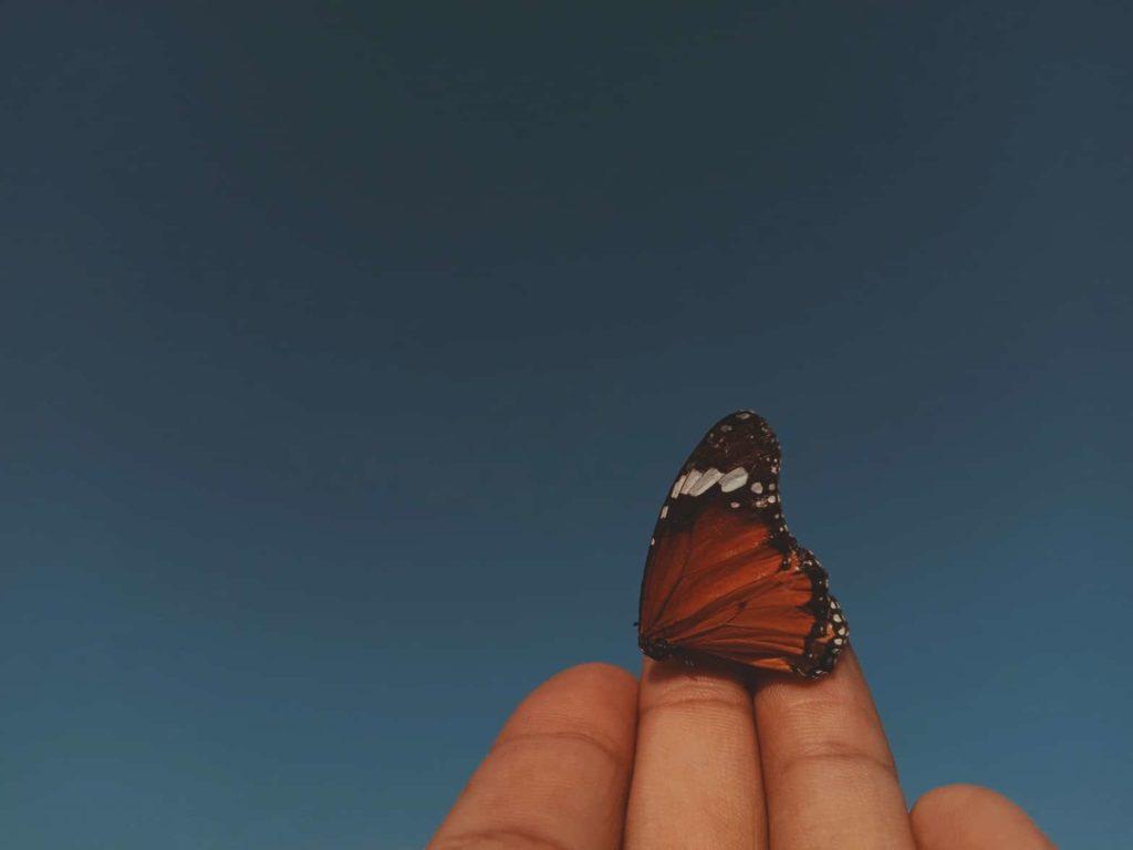 More vivid dreams-awaken