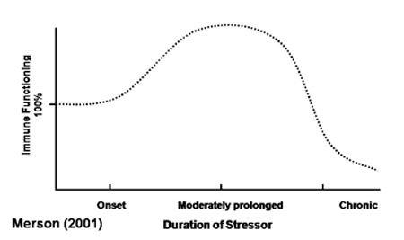 Stress Immune System-awaken