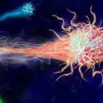 build-immunity-awaken