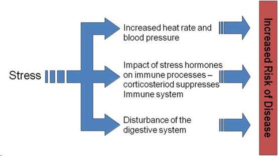 stress-illness-awaken