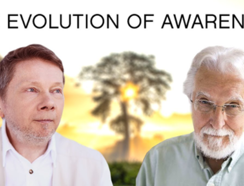 Evolution of Awareness – A Conversation with Neale Donald Walsch and Eckhart Tolle