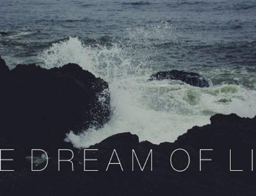 The Dream Of Life – Alan Watts