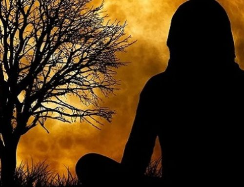 The Six Foundations Of The Natural State Of Meditation