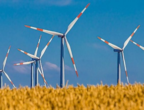 U.S. Wind Energy Prices Are At Historical Lows, DOE Report Says