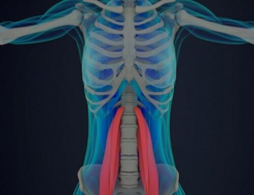 Solutions For Tight Psoas Muscles