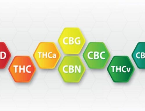 CB… Next? 4 Cannabinoids To Watch Beyond CBD