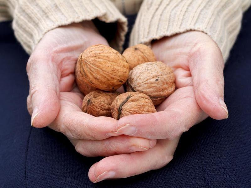 summary Eat more nuts-aWAKEN