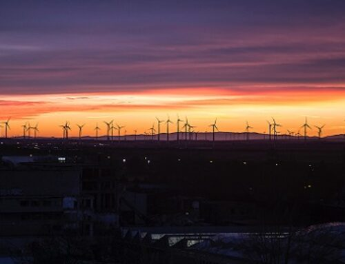 How Wind Turbines Are Providing A Safety Net For Rural Farmers