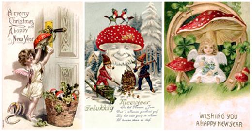 victorian-mushroom-cards-awaken