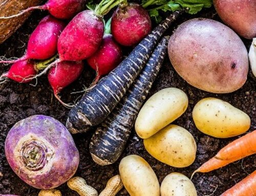 How To Cook & Use Root Vegetables + 7 Root Vegetable Recipes