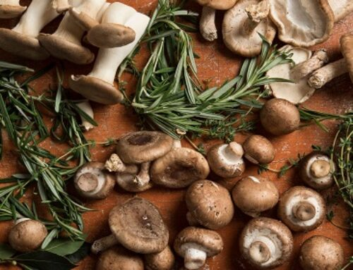 The Power Of Mushrooms: Nutrition, Benefits, & Risks Of Edible Mushrooms