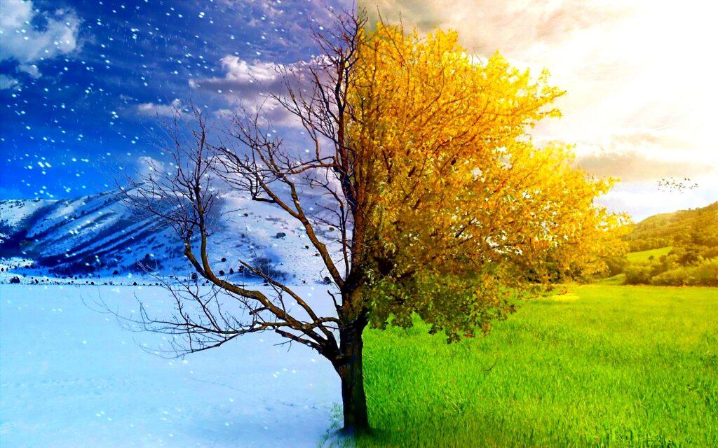winter-to-spring-awaken