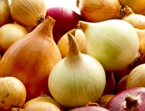 Five Reasons To Eat More Onions