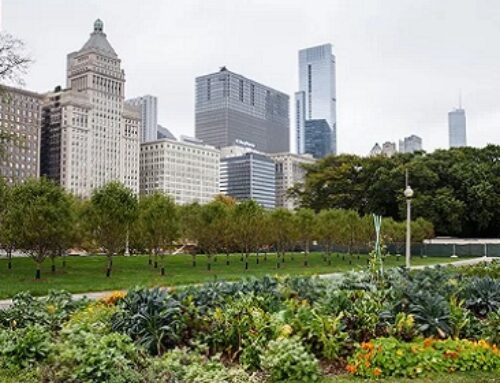 Many Cities In The US Could Grow All Their Own Food