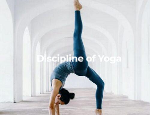 Discipline Of Yoga