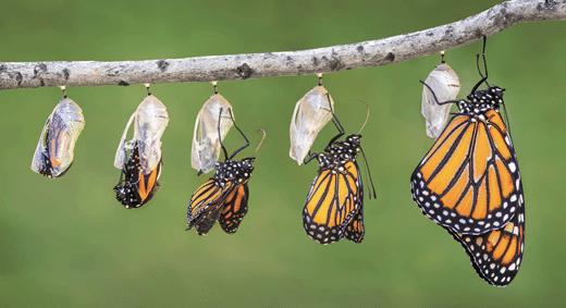 How-Spirituality-Has-Transformed-in-25-Years-awaken-awaken