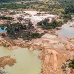 Amazon-Rainforest-awaken