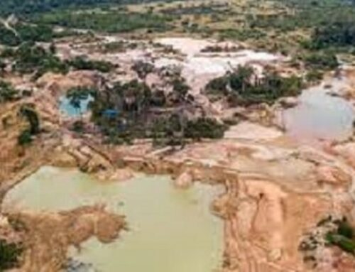 Aerial Footage Shows Damage In Amazon Rainforest